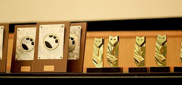 coruja-ouro-festivalbc